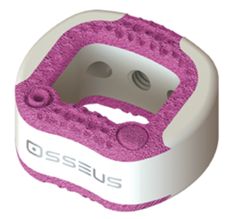 Spine startup bootstraps a 3D printed cervical implant with two materials