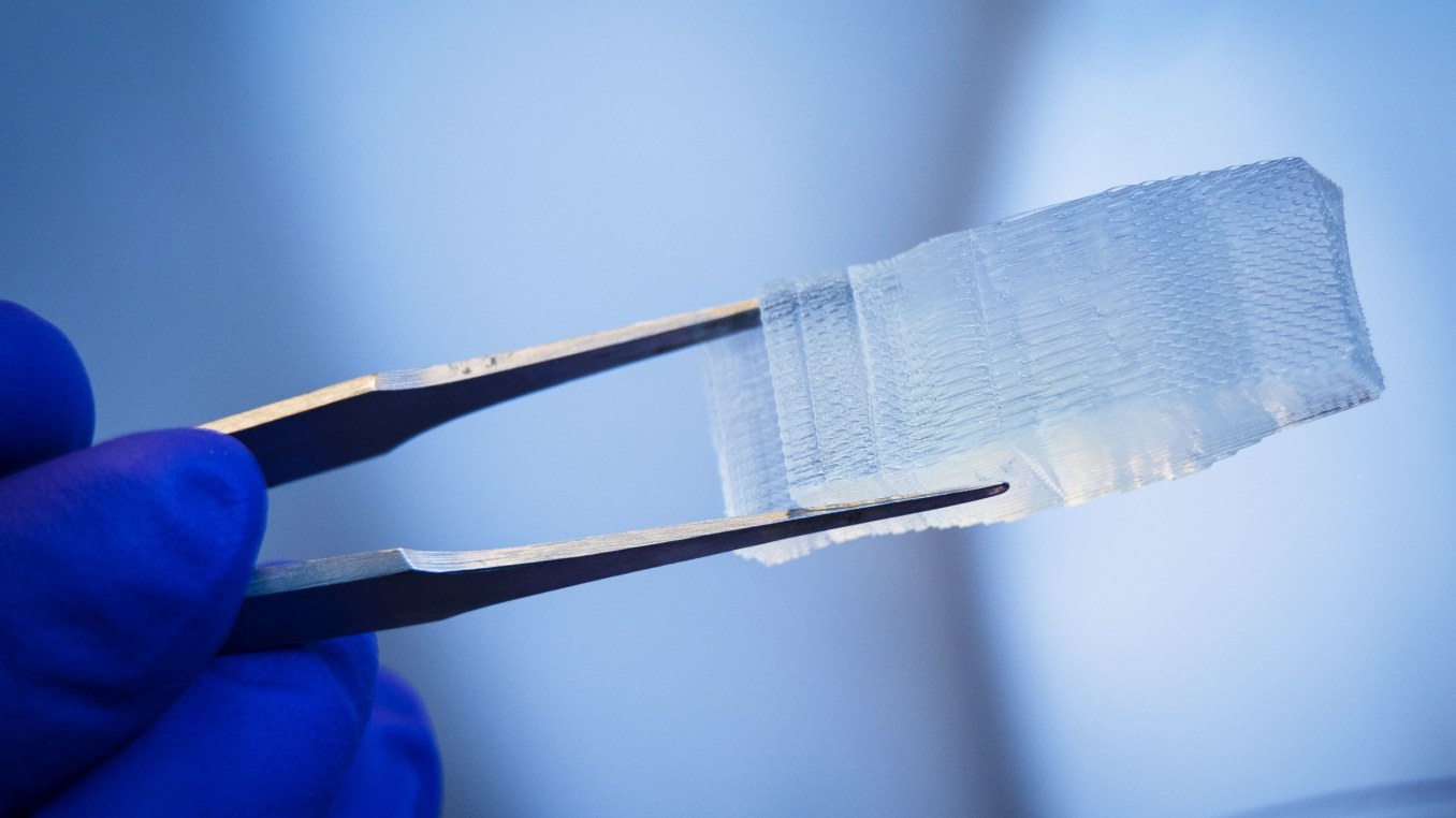 Bio-Printers are churning out biologics for spine repair