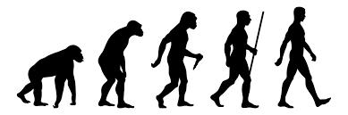 Expert Insights: The Data Evolution