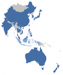 A post-COVID outlook at the Asia Pac reconstructive Orthopedic markets